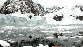 Mensen dichtbij Ijsijsschol en ijsberg in oceaan van Antarctica stock footage