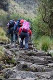 Mensen die in de bergen wandelen royalty-vrije stock foto