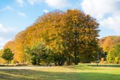 Mensen die in de herfst, Nederland lopen Stock Afbeelding
