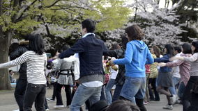 Mensen die de kersenbloesem in Yoyogi-park, Tokyo op 14 April, 2011 vieren stock footage