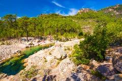 Mensen die in de rivier van Corsica met pijnboombomen swinning in Col. de Bavel stock foto's