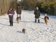 Mensen die in de sneeuw lopen Stock Foto