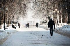 Mensen die door het park tijdens de koude de winterdag lopen in Yaroslavl, Rusland royalty-vrije stock afbeelding