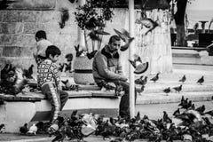 Mensen die duiven voeden Royalty-vrije Stock Fotografie