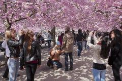 Mensen die in een bloemrijk park lopen royalty-vrije stock afbeeldingen