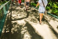 Mensen die in een dierentuin lopen Stock Foto's