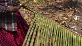 Mensen die een palmblad snijden stock video