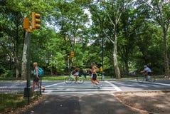 Mensen die en bij het Central Park in de Stad van New York, de V.S. aanstoten cirkelen Stock Foto
