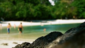 Mensen die en op een tropisch strand zwemmen ontspannen stock footage