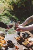 Mensen die glazen rode wijn clinking Stock Fotografie