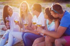 Mensen die glazen witte wijn houden bij de strandpicknick Royalty-vrije Stock Foto's