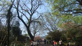 Mensen die het Blauwe Park van de Hemelrecreatie in Taiwan bezoeken stock foto's