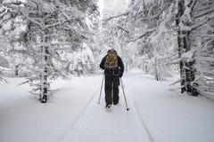 Mensen die in het bos wandelen die van de bergwinter door sneeuw wordt behandeld Royalty-vrije Stock Afbeeldingen