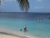 Mensen die in het Caraïbische overzees spelen stock video