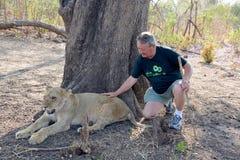 Mensen die met leeuwen lopen stock foto