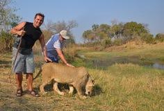 Mensen die met leeuwen lopen royalty-vrije stock foto's