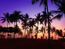 Mensen die nemend mooie zonsondergangmening bevinden zich royalty-vrije stock afbeeldingen