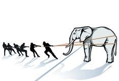 Mensen die olifant trekken Stock Afbeeldingen