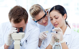 Mensen die onder een microscoop kijken Stock Foto's