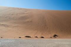 Mensen die onderaan Big Daddy Dune in de Zoute Pan van Sossusvlei beklimmen Stock Foto's