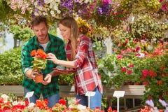 Mensen die op bloemen in tuin letten Royalty-vrije Stock Foto