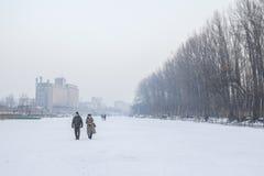 Mensen die op de bevroren rivier Tamis in Pancevo, Servië lopen toe te schrijven aan een uitzonderlijk koud weer over de Balkan stock foto's