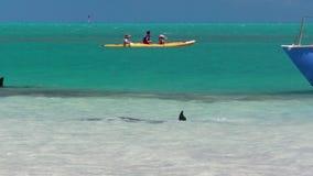 Mensen die op de oceaan in langzame motie kayaking stock footage
