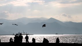 Mensen die op de overzeese kust lopen stock footage