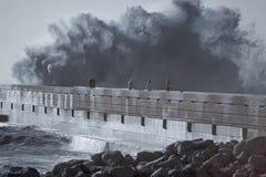 Mensen die op het overzeese onweer letten Stock Fotografie