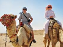 Mensen die op kamelen in Egypte reizen Stock Afbeeldingen