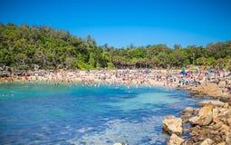 Mensen die op Shelly strand in Mannelijk ontspannen, Sydney, Australië stock fotografie