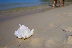 Mensen die op vakantie bij het strand lopen royalty-vrije stock foto