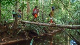 Mensen die rivier op de brug van de boomboomstam kruisen, stam van Korowai-mensen Stock Afbeeldingen