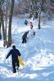 Mensen die in sneeuw spelen Stock Afbeelding