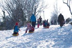 Mensen die in sneeuw spelen Stock Fotografie