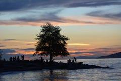 Mensen die van de zonsondergang genieten Royalty-vrije Stock Foto's