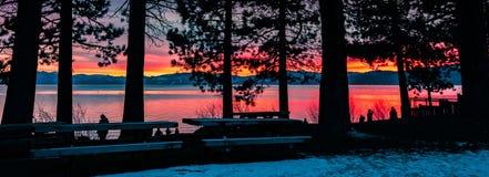 Mensen die van een verbazende zonsondergang op de oever van Meer Tahoe genieten; de silhouetten van pijnboombomen in de voorgrond stock foto