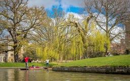 Mensen die van het wegschoppen op riviernok genieten op een heldere zonnige dag, Cambridge royalty-vrije stock afbeelding