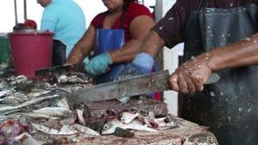 Mensen die vissen schoonmaken stock videobeelden