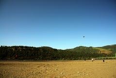 Mensen die vlieger op strand vliegen stock foto