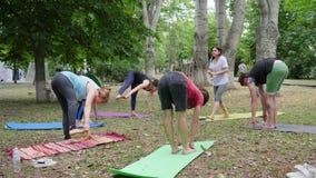 Mensen die yoga, opwarming binnen in openlucht, wijfje en kerels op kleurrijke mat uitvoeren die opheffend zijn benen omhoog, vro stock footage