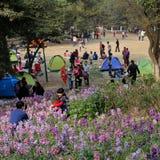 Mensen in een park, in de lente Royalty-vrije Stock Afbeelding