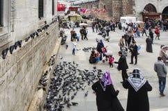 Mensen en duiven rond de Nieuwe Moskeebinnenplaats Royalty-vrije Stock Afbeelding