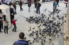 Mensen en duiven rond de Nieuwe Moskeebinnenplaats Royalty-vrije Stock Fotografie