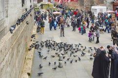Mensen en duiven rond de Nieuwe Moskeebinnenplaats Stock Foto's