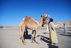 Mensen en kamelen royalty-vrije stock foto's