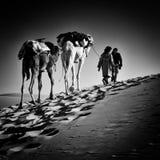 2 mensen en 2 kamelen in de woestijn van de Sahara Stock Afbeeldingen