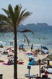 Mensen en palm op het strand Stock Foto
