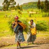 Mensen in Ethiopië stock afbeeldingen