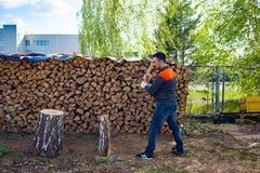 Mensen hakkend hout met een mes Het oogsten daling voor de winter in Rusland Berkbrandhout royalty-vrije stock fotografie
